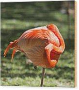 Pink And Orange Ball Wood Print