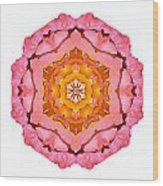 Pink And Orange Rose I Flower Mandala White Wood Print