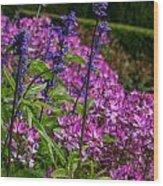 Pink And Purple Wood Print