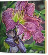 Pink And Purple Lily's Wood Print