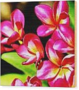 Pink And Red Plumeria Wood Print