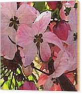 Pink And White Shower Tree Wood Print
