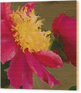 Pink And Yellow Au Deux Wood Print