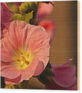 Pink And Yellow Hollyhock Wood Print