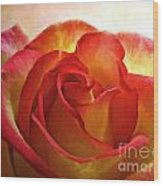 Pink And Yellow Rose - Digital Paint Wood Print