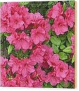 Pink Aura Wood Print