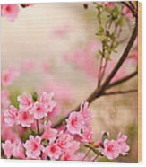 Pink Azalea Bush Wood Print