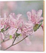 Pink Azalea Flowers In The Spring Wood Print