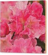 Pink Azalias Wood Print