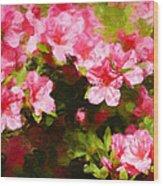 Pink Azealas Wood Print