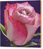 Pink Bliss Wood Print