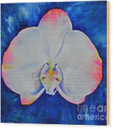 Pink Blush Orchid Wood Print