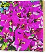 Pink Bouganvilla Wood Print