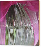 Pink Bowed Glass Wood Print