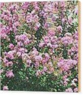 Pink Bush Wood Print