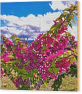 Pink Bush Wood Print by Lisa Cortez