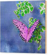 Pink Butterfly Wood Print