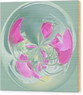 Pink California Poppy Orb Wood Print