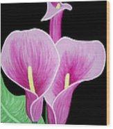 Pink Calla Lilies 1 Wood Print