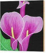Pink Calla Lillies 2 Wood Print