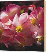 Pink Cascade Wood Print