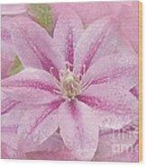 Pink Clematis Profusion Wood Print