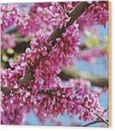 Pink Cluster Flowers Wood Print
