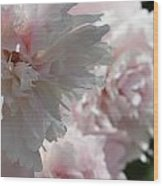 Pink Confection Wood Print