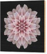 Pink Dahlia Flower Mandala Wood Print by David J Bookbinder