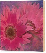 Pink Daisies Abstract Wood Print