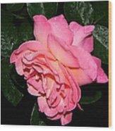 Pink Diamonds Wood Print