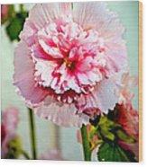 Pink Double Hollyhock Wood Print by Robert Bales