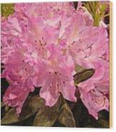 Pink Fiesta Wood Print