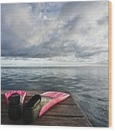 Pink Fins On Dock Wood Print