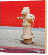 Pink Fire Hydrant Wood Print