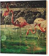Pink Flamingos - Shangri-la Wood Print