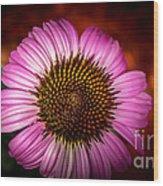 Pink Flower Blooming Wood Print