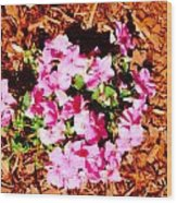 Pink Flower Garden Wood Print