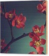 Pink Flower Wood Print by Jelena Jovanovic