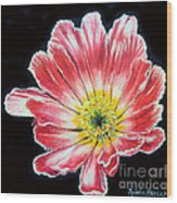 Pink Flower Painting Oil On Canvas Wood Print by Drinka Mercep
