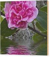 Pink Flower Reflection Wood Print