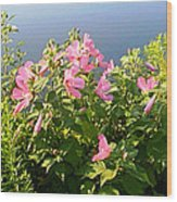 Pink Flowers By The Lake Wood Print