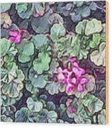 Pink Flowers Painting Wood Print