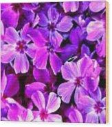 Pink Flox Everywhere Wood Print