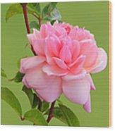 Pink Gem Wood Print