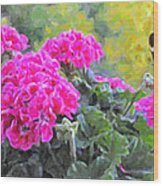 Pink Geraniums And Butterfly Wood Print