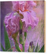 Pink Goddess Wood Print