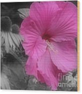 Pink Hibiscus In Partial Color Wood Print