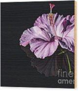 Pink Hibiscus On Black Water Wood Print