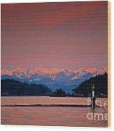 Pink Horizon Wood Print
